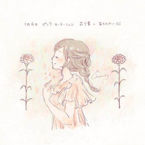 ピンクカーネーションの花言葉【1月6日の誕生花】フリーアイコン配布*
