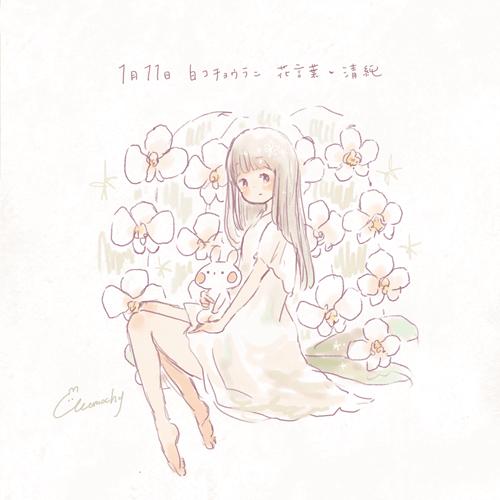 白コチョウラン白胡蝶蘭の花言葉1月11日の誕生花フリーアイコン配布