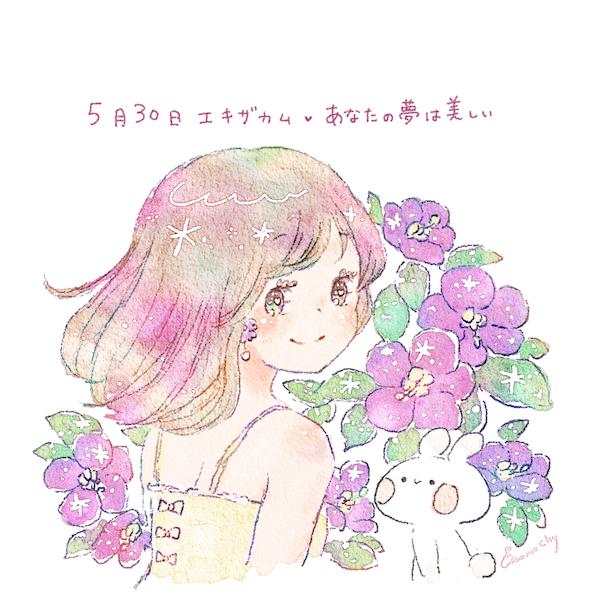 エキザカムの花言葉【5月30日の...