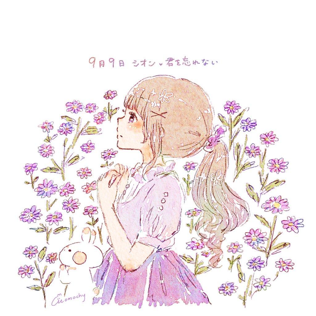 シオン紫苑オニノシコグサ鬼の醜草の花言葉9月9日の誕生花